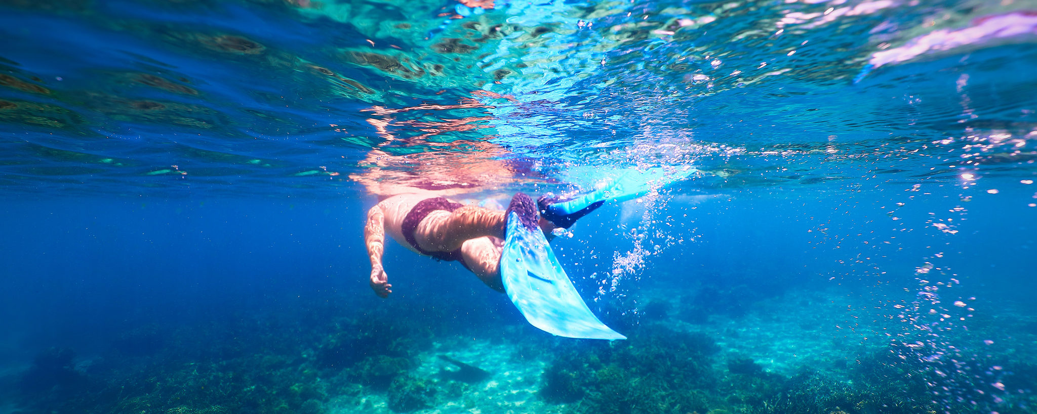 snorkelling plongée tortues madagascar
